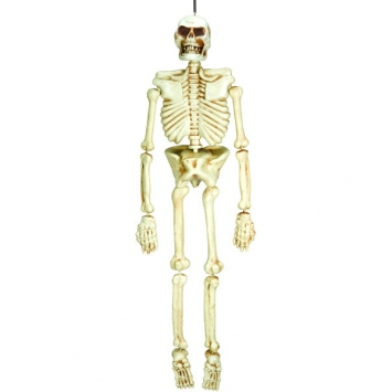 Plastic Skeleton 5 ft