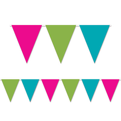 Indoor and Outdoor Pennant Banner - 10in x 12ft - Green Blue Pink