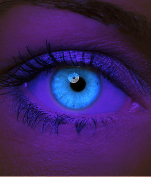 Novelty Contact Lenses - Blue UV