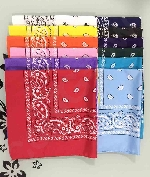 21 Inch Bandana - Assorted 12ct