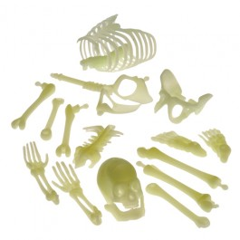 Glow in the Dark Skeleton Box of Bones