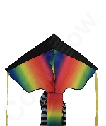 Fun Central AY979 43 Inch Rainbow Delta Kite Premium