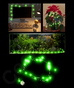 LED 6.5 Foot Waterproof String Light - Green