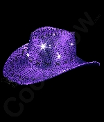 LED Sequin Cowboy Hat with Stitching - Purple