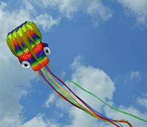 Frameless Parafoil Large Rainbow Octopus Kite