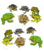 Fun Central AZ916 3 Inch Toy Frogs Toy Figure - Assorted