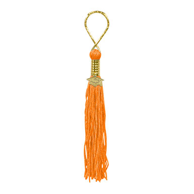 Orange Tasseled Key Chain