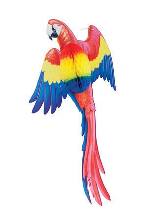 Parrot Honeycomb Decoration- 22in