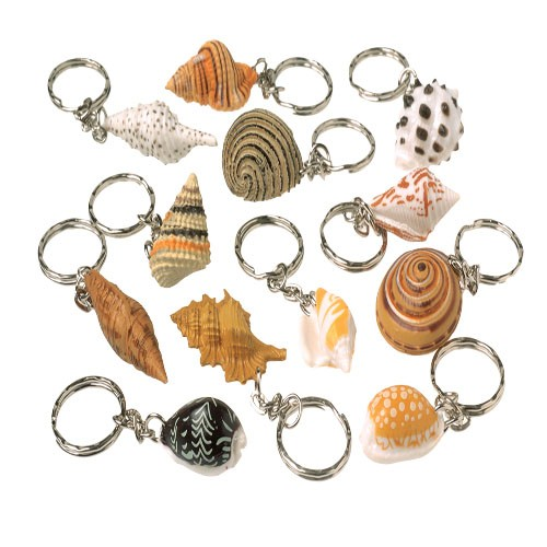 Sea Shell Key Chains