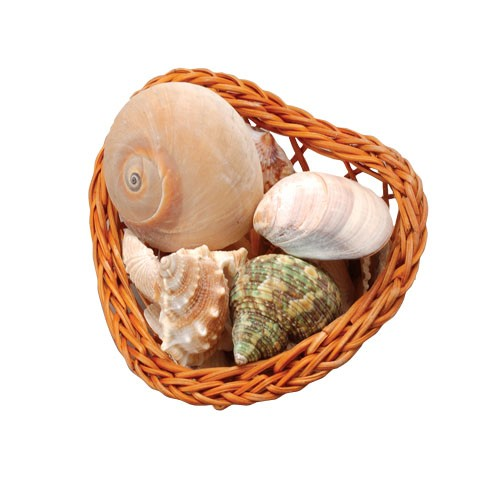 Assorted Shells In Heart Basket