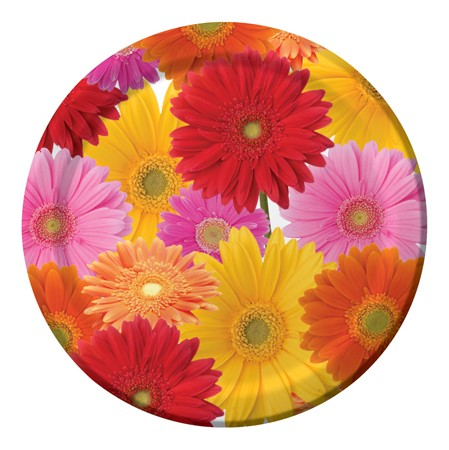 Gerbera Bouquet 7in Lunch Plates
