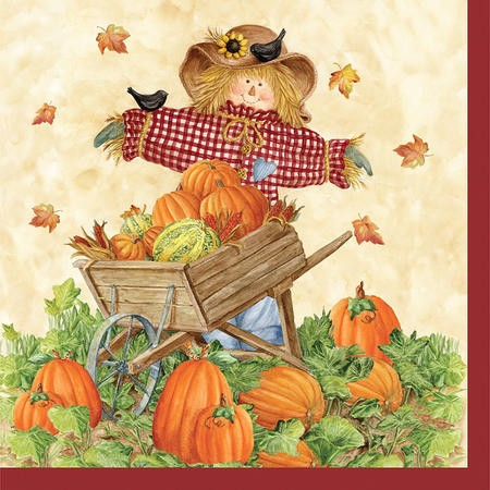 Pumpkin Fest 2-Ply Beverage Napkins
