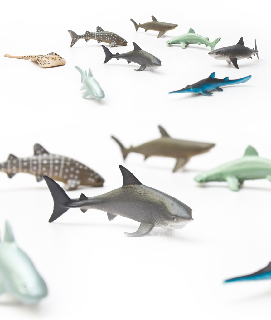Fun Central AU195 3 Inch Shark Animals - Assorted 12ct