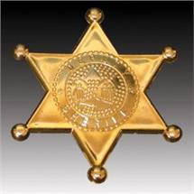GOLD SHERIFF BADGES PLASTIC