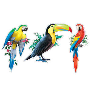Tropical Birds Two-Sided Cutouts- 3ct