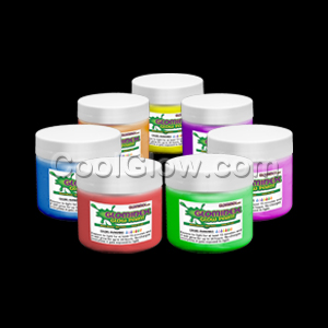 Glominex Glow Paint 2 oz Assorted Jars - 6