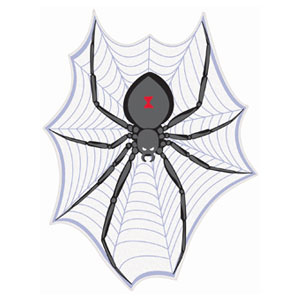 Spider on Web Cutout- 14in