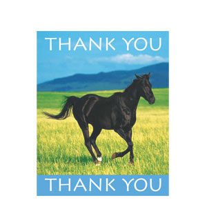 Wild Horses Thank You Cards- 8ct
