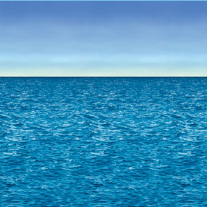 Ocean and Sky Backdrop- 30ft