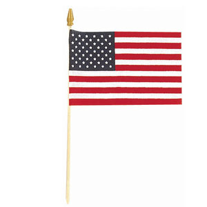 USA Flag - Cloth 18in x 12in