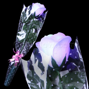 LED Rose - White