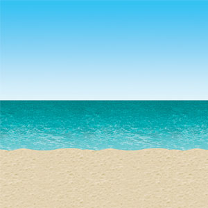 Ocean and Beach Backdrop- 30ft