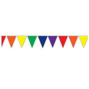 Indoor and Outdoor Pennant Banner - 10in x 12ft - Multicolor
