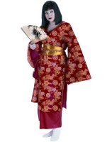 Geisha Plus Adult Costume