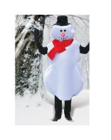 Mr. Snowman Adult Costume