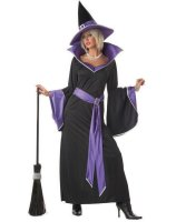 Incantasia The Glamour Witch Adult Costume - X-Large