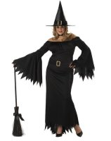 Elegant Witch Adult Plus Costume