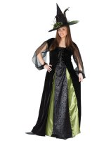 Goth Maiden Witch Adult Plus Costume