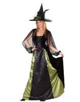 Goth Maiden Witch Adult Costume - Large 8-14