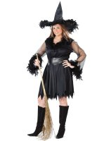 Sexy Feather Witch Adult Plus Costume