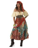 Fortune Teller Elite Collection Adult Costume - Large