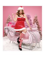 Santa's Little Helper Dress Adult Plus Costume