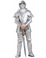 Knight in Shining Armor Adult Costume - One Size