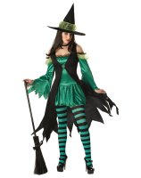 Emerald Witch Adult Costume - Small (6-8)