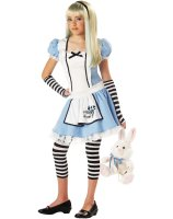Alice Tween Costume - Large
