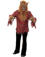 Werewolf Adult Costume - Large (40-42)