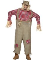 Mr. Scarecrow Adult Costume