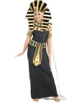 Queen Nefertiti Adult Costume - Large