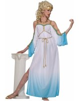 Grecian Gorgeous Goddess Adult Costume - One Size Fits Most Adults