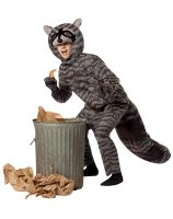 Raccoon Adult Costume - One Size Fits Most Adults