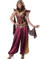 Desert Jewel Adult Costume - Large