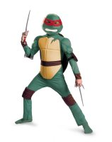 Teenage Mutant Ninja Turtles Raphael Animated Classic Muscle Child Costume