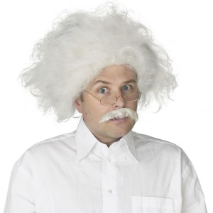Einstein Wig Adult - White / One Size