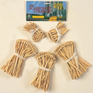 The Wizard of Oz - Scarecrow Straw Accessory Kit - Brown / One Size