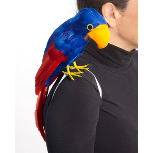 Parrot Pirate - Red / One Size