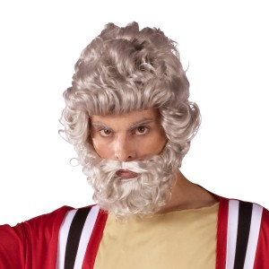 Moses Wig And Beard Set Adult - Gray / One-Size
